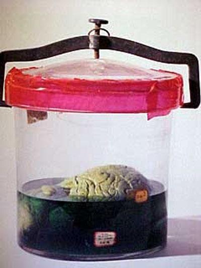 atrocidades-formol-cerebro