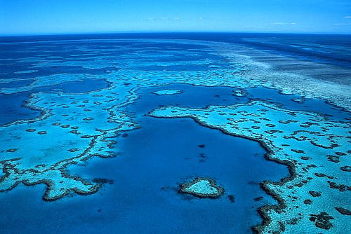 barrera-coralina-australiana