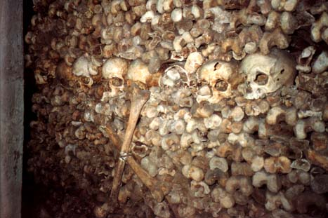 catacumbas paris catacombes craneos