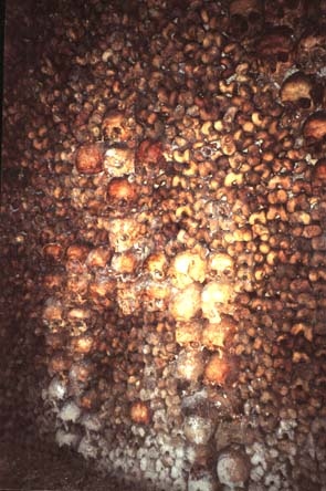 catacumbas paris catacombs bones