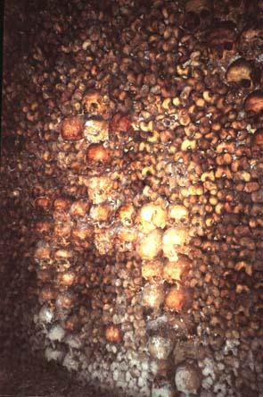 catacumbas paris catacombs bones