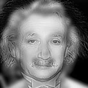 ilusion-optica-einstein-marilyn