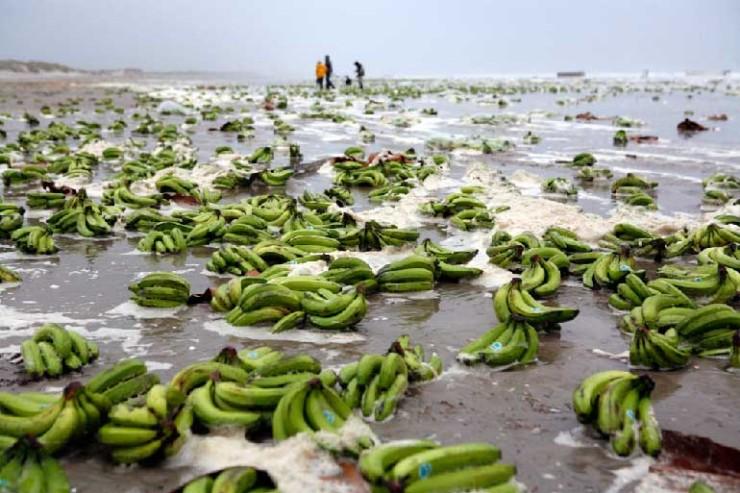 imagenes-internet-bananas-platanos