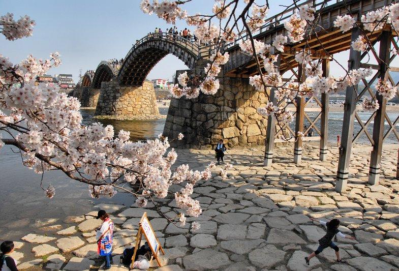 kintai puente japon cerezos