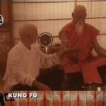 kung fu parodia