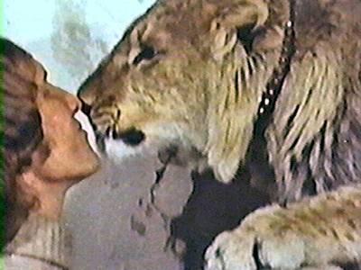 leon christian amor humanos