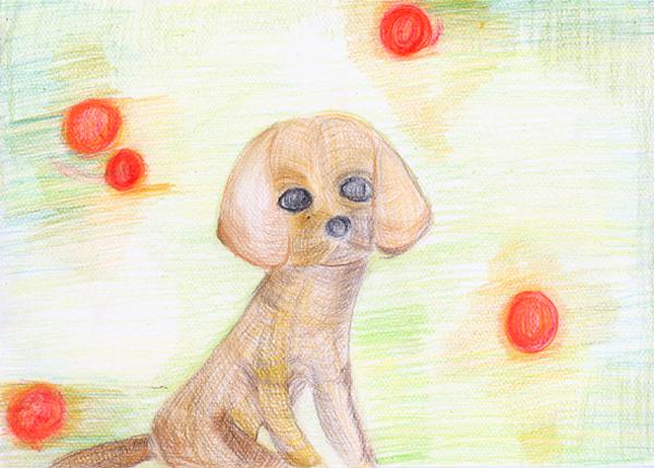 relacion-perro-hombre-muramatsu_kanako
