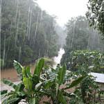 aguacero lluvia gotas torrencial