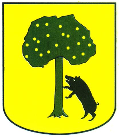 aras apellido escudo armas