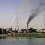 ¿Pueden las toxinas llegar al ser humano a través del medio ambiente?