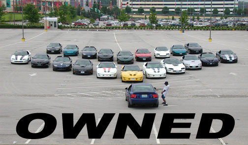 owned cobra-coches