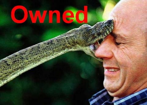 owned-serpiente-cara-mordiendo