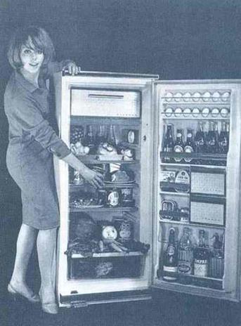 pertecta-mujer-ama-de-casa-machismo-nevera-refrigerador