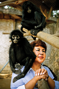Ana Julia Torres with spider monkeys at the Villa Lorena Animal Refuge in Cali, Colombia.
