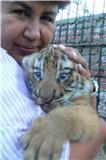 refugio villa lorena cachorro tigre