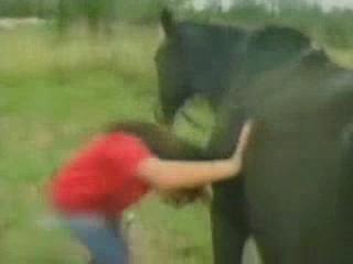 video humor presentadora caballo