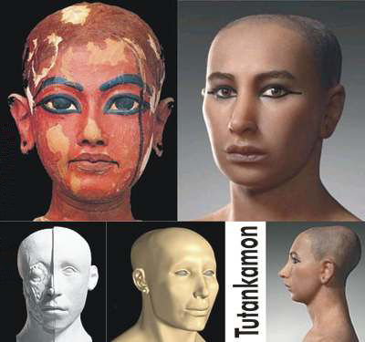 cabeza-tamano-crece-crecer-crecimiento-edad-tutankamon-18-anos