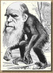 como origen-evolucion-charles-darwin