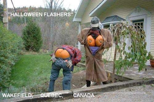 halloween humor espantapajaros calabaza