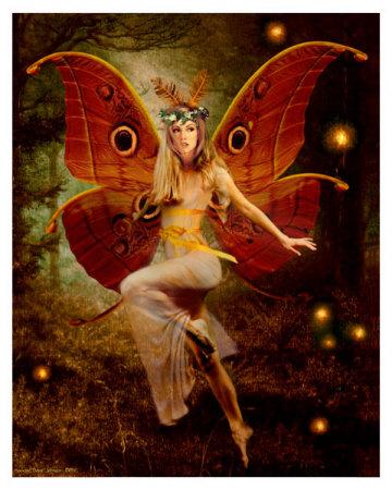 howard-david-johnson-midnight-fairy-posters
