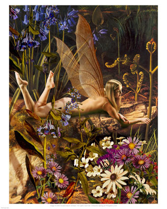 howard-david-johnson-the-flower-fairy-posters