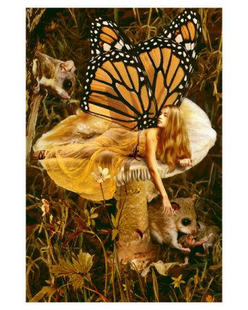 howard-david-johnson-the-mushroom-fairy-posters