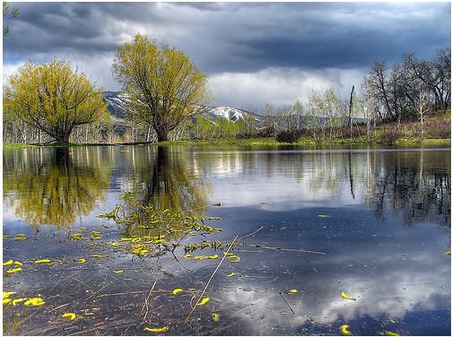 imagen-fotos-hdr-estanque-lilly
