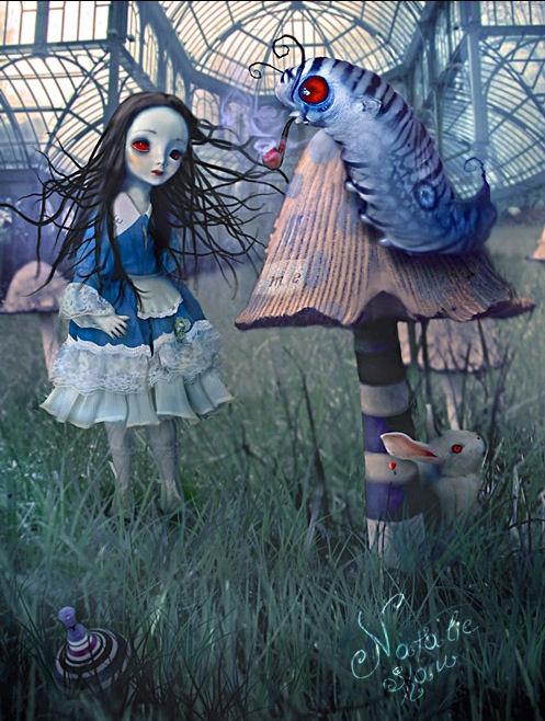 natalie-shau-alicia-y-la-oruga-azul