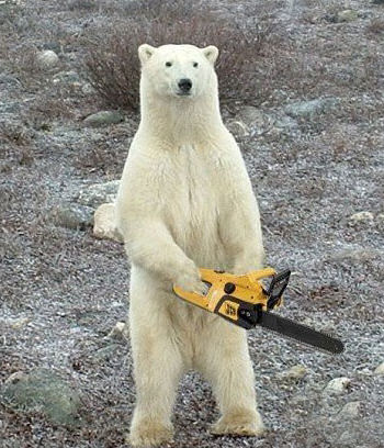 animales-risa-humor-oso-polar