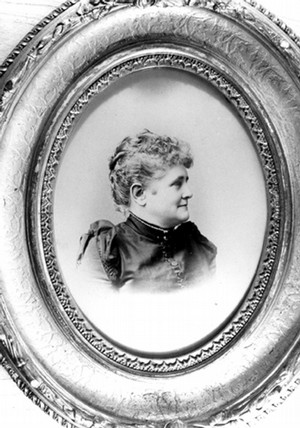 biblioteca willard louise dama gris