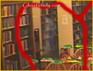 willard library biblioteca aparicion