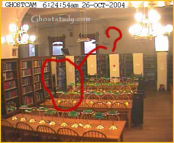 willard library biblioteca ente