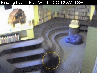 willard library biblioteca webcam camara
