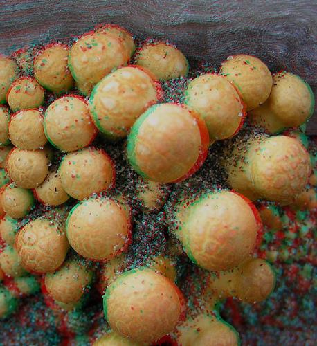 imagen 3D setas fungus