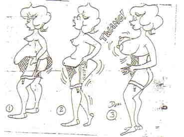 imagenes-graciosas-faja-gorda
