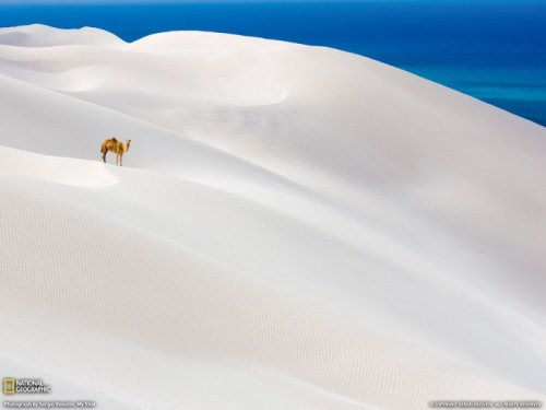 national geographic imagenes naturaleza