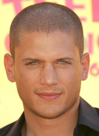 wentworth-miller-prison-break