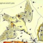Constelacion Cygnus cisne cruz norte