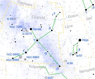 Cygnus constellation constelacion cisne