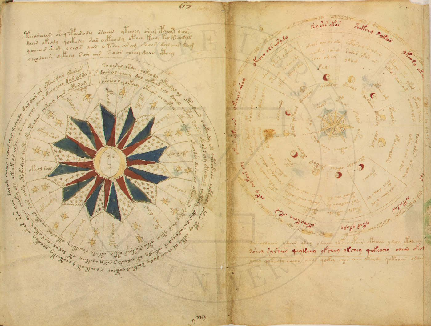 Voynich manuscrito libro misterio