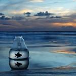 imagenes-arte-pecera-mar