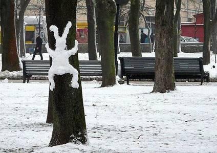 nieve nevado humor snow 02