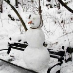nieve nevado humor snow 07