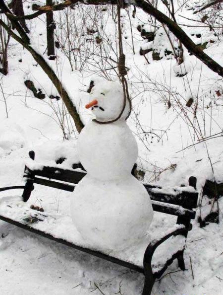 nieve nevado humor snow 07