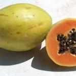 ¿Qué propiedades tiene la Papaya?