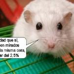 raton-genoma-humano-parecido