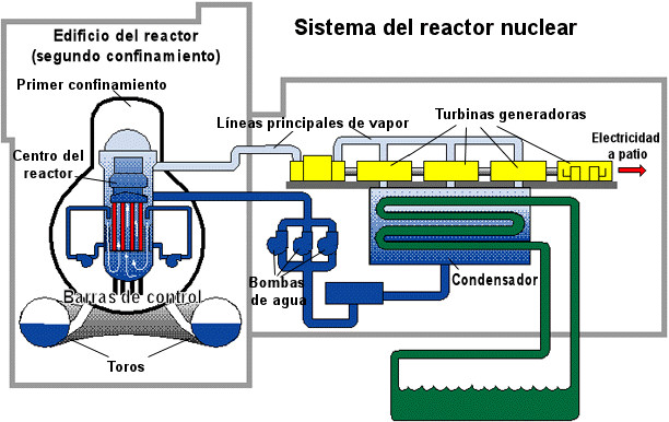 ciclo central nuclear reactor agua ebullicion bwr