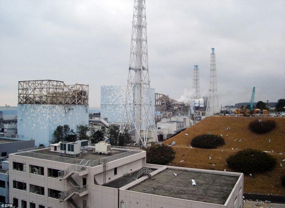 imagenes japon terremoto 2011 tsunami terror panico nuclear