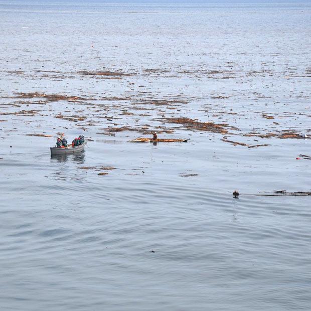 tsunami japon mar sobreviviente 2011 Hiromitsu Shinkawa futaba fukushima