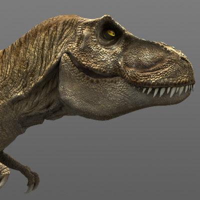 Tyrannosaurus Rex tiranosaurio trex cabeza